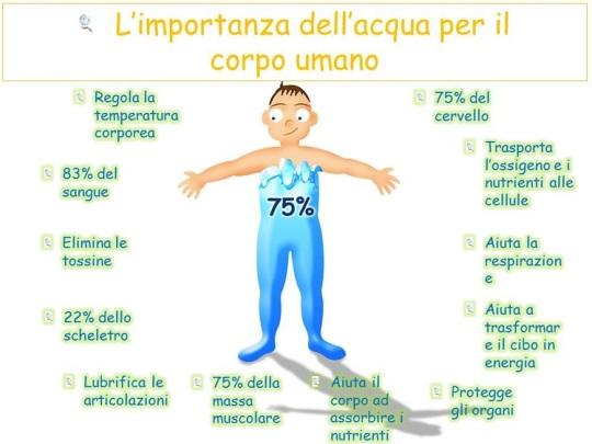 limportanza-dellacqua-dietista-benacchio