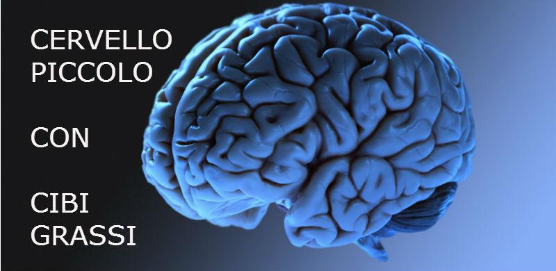 ALIMENTAZIONE_cervello_DIETISTA_BENACCHIO