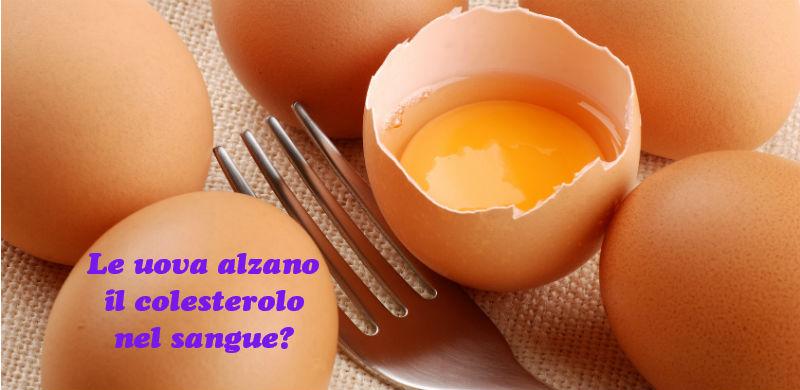 uova fanno aumentare colesterolo-dietista benacchio