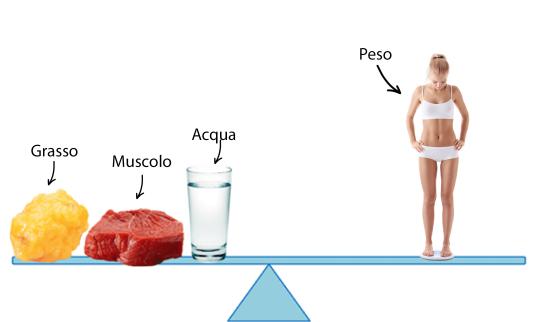 bia e composizione corporea-dietista-benacchio